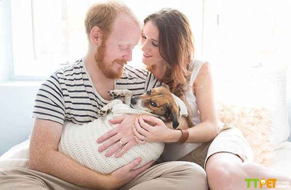 美国夫妇与爱犬拍摄温馨 亲子照 显爱意